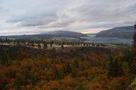Vince Ferguson - Catherine Creek Autumn - Digital Image