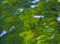 Vince Ferguson - Abstract Water 03 - Digital Image