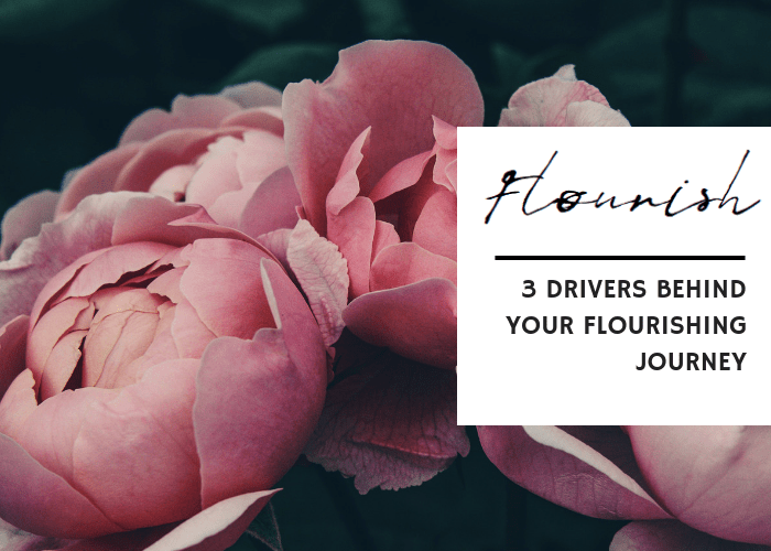 3 DRIVERS BEHIND YOUR FLOURISHING JOURNEY