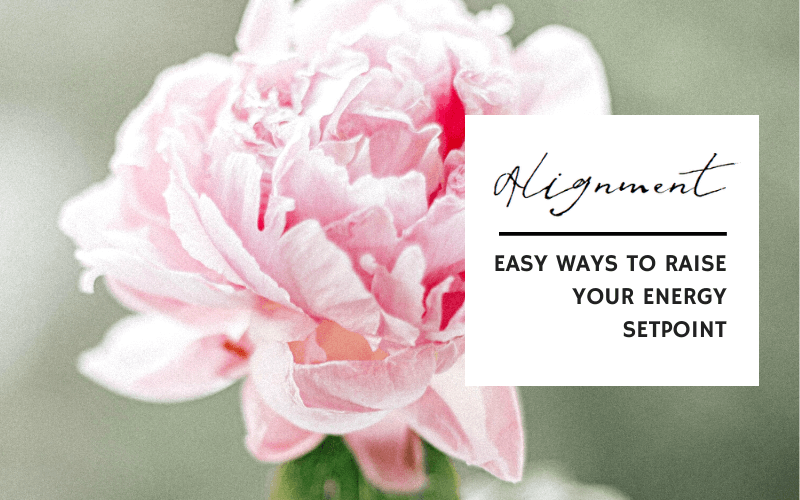 Alignment: Easy Ways To Raise your Energy Setpoint. What got you here, won't get you there. Learn easy ways to align with your vision and goals