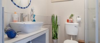 Toilet Repair Nottingham