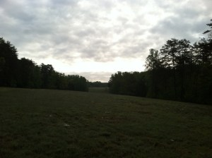 The clearing between Hazel Grove and Fairview.Looking Northeast from the ridge line, toward Fairview. (KDW)