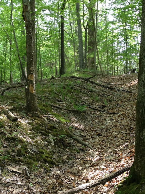 Compared to other earthworks, these look backwards because the ditch is in front of the mound of dirt, not behind is as it is in most field fortifications.