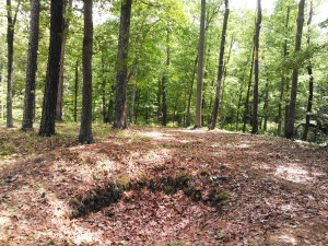 Confederate Rifle Pits at Pamplin Historical Park