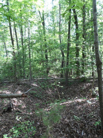 The Confederate earthworks at North Anna are some of the best-preserved in the East.
