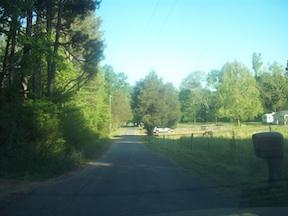 RoadToLeeWhiteHomestead