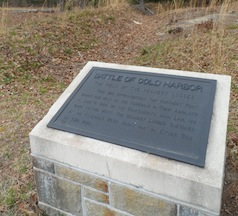 """""""Field of Heaviest Losses"""" at Cold Harbor"""