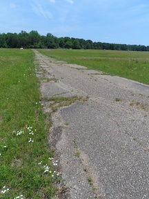 The former driveway to the cement plant still cuts across the Fairview clearing