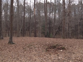 Confederate rifle pits at Pamplin Historical Park