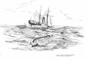 The USS Alligator in Tow with the USS Sumter
