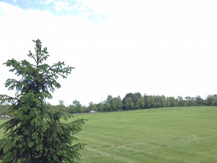 SR Front Lawn 051416