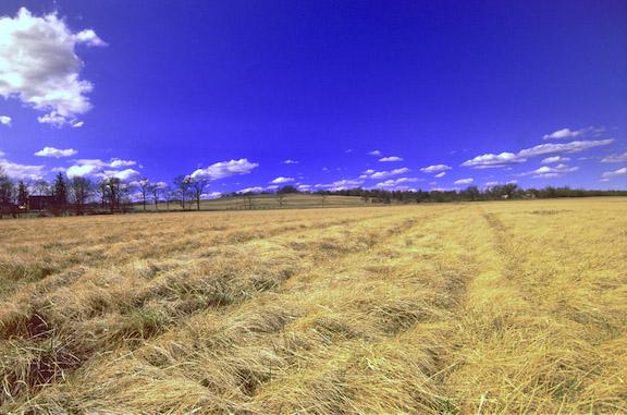 Kernstown-Pritchard Hill