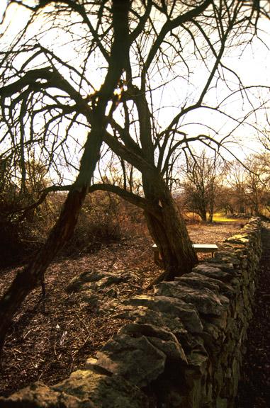 Kernstown-Stone Wall Defenses.jpg