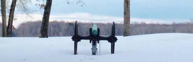 Lafleur Wilderness-snowy cannon