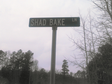 Shad Bake Lane (EA)