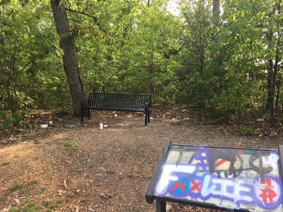 Trash Park 03