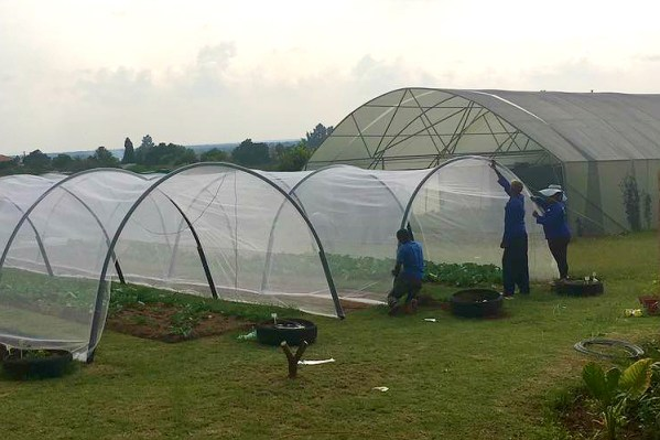 shade net hoop house/tunnel