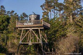 brewery-gulch-tower