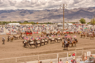 Opening ceremony at the Mule Days arena