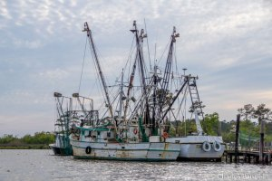 Shrimp boats on the Intercostal Waterway