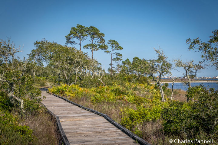 Boardwalk on the Jeffery Friend Trail along the lagoon