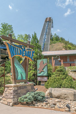 Wild Eagle Coaster at Dollywood Theme Park