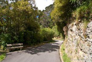 Paved trail neat the tuatara habitat at Zealandia