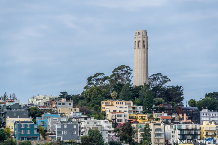 Coit Tower viewed from San Francisco's Public Shore Stroll