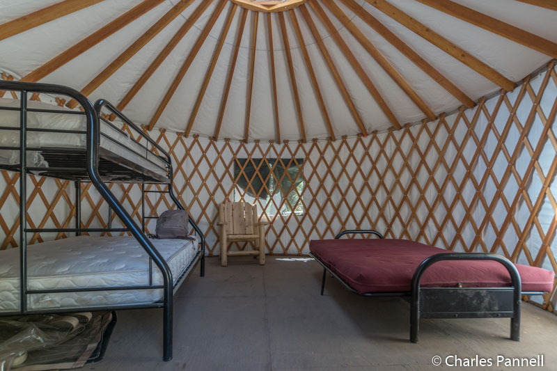 Inside the yurt at campsite 2
