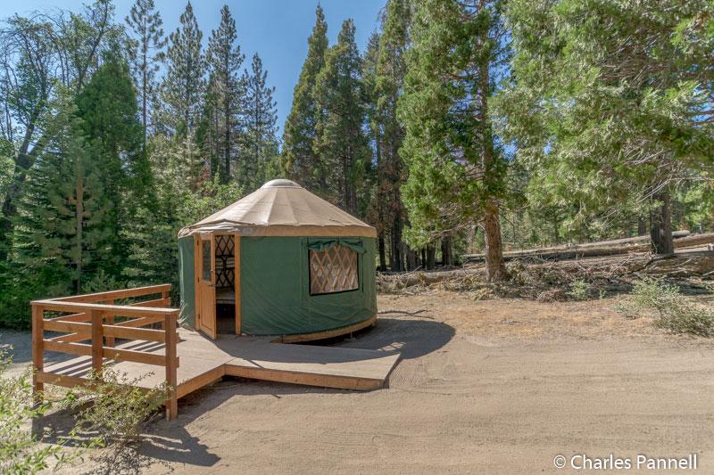 Yurt at campsite 2