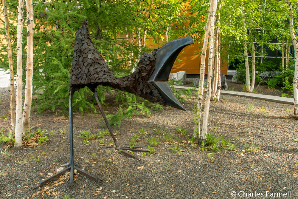 Baby Raven in Nails (Rachelle Dowdy) greets visitors to the Morris Thompson Cultural and Visitor Center
