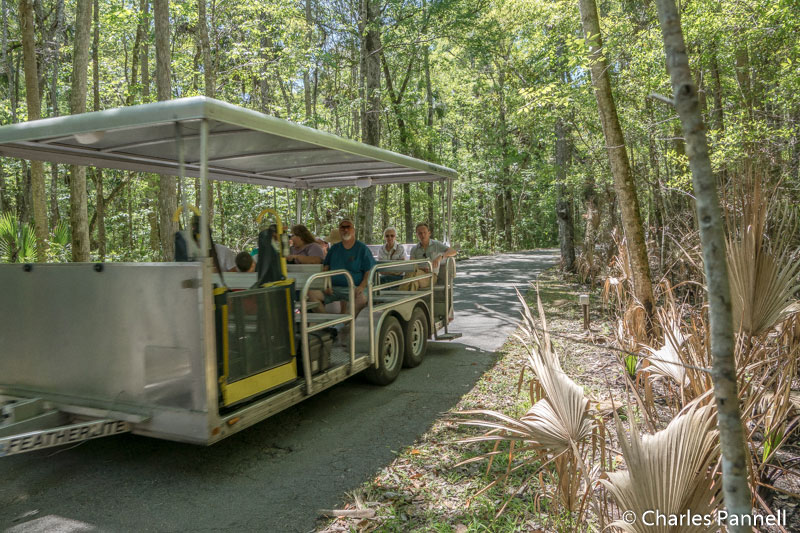 Accessible tram on the Pepper Creek Trail