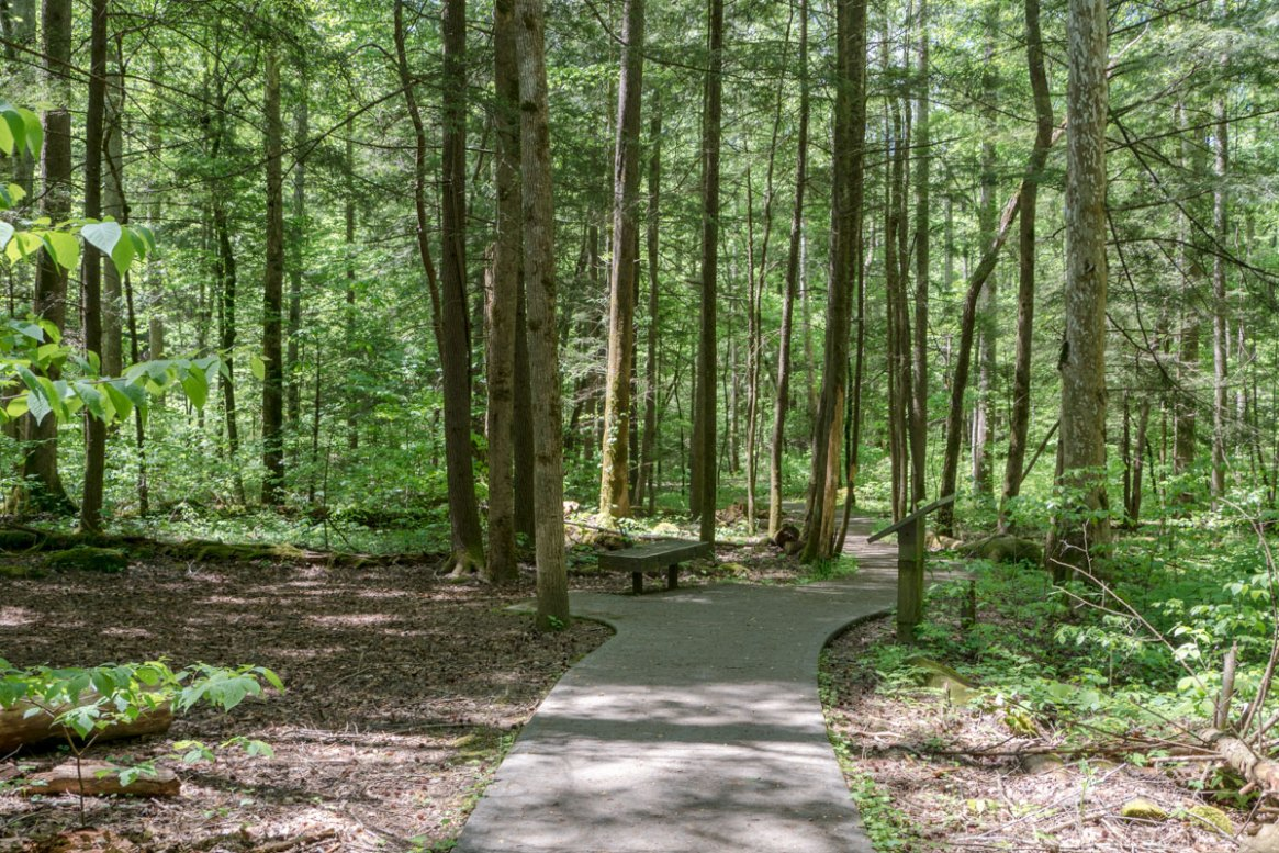 Sugarland Valley Nature Trail