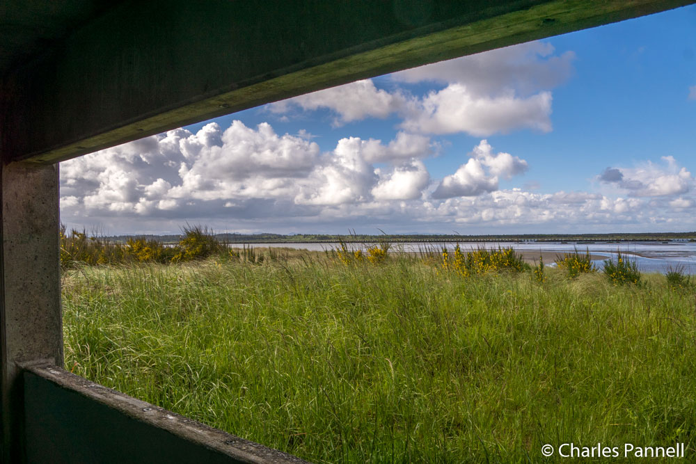 View from the wildlife viewing bunker