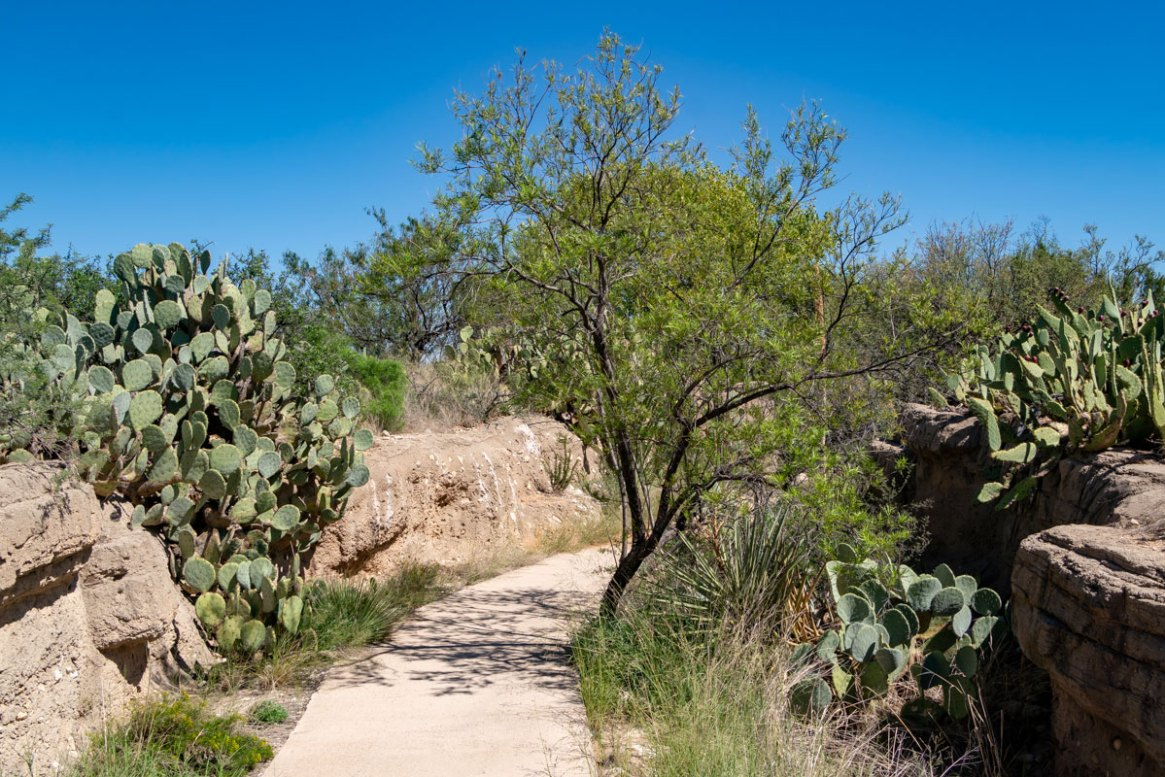 Pathway through the Gypsum Hills habitat