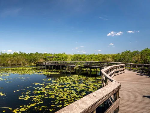 The Everglades – It's More Accessible Than You Think