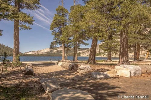 Offbeat Yosemite Six Fun And Funky Accessible Finds