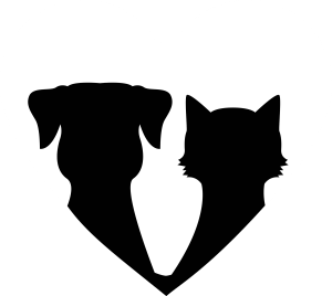 datos salud emerid pets icono