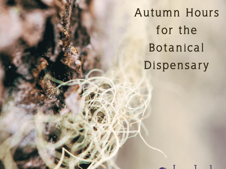 Autumn Hours for the Botanical Dispensary