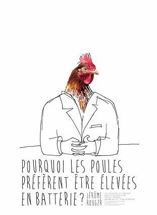 Pourquoi les poules préfèrent être élevées en batterie