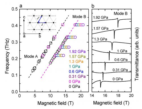 HIGH-FIELD CHARGE ORDER ACROSS THE PHASE DIAGRAM OF YBCO