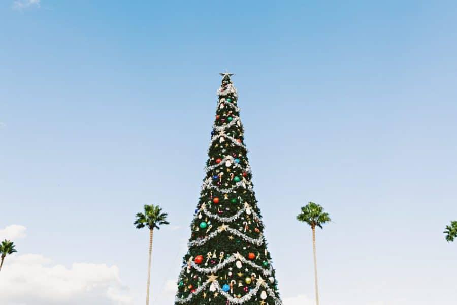 Grote versierde kerstboom op Gran Canaria