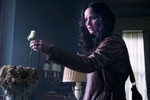 trandafir-alb-jocurile-foamei