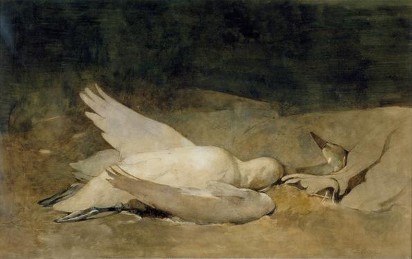 Emil Carlsen Still Life with Swan, 1894
