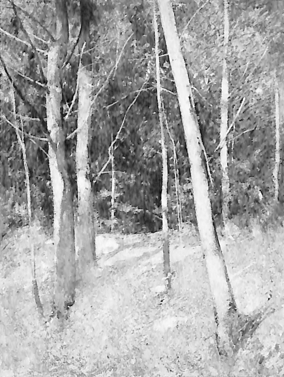 Emil Carlsen Forest Interior, Ogunquit, ME, ca.1921