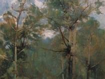 Emil Carlsen Woods, 1902