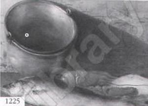 Emil Carlsen : Still life, ca.1900.