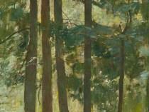 Emil Carlsen White Pine, 1928