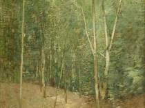 Emil Carlsen : Woodland scene, ca.1920.