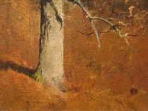 Emil Carlsen : Tree trunk, ca.1926.